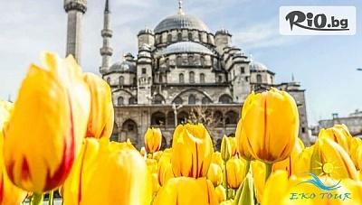 3-дневна екскурзия до Истанбул за Фестивала на лалалето! 2 нощувки, закуски в Хотел Kumburgaz Marin Princess + транспорт, водач и БОНУСИ, от Еко Тур Къмпани